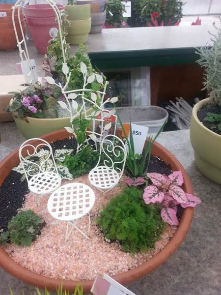 fairy gardens are the newest addition to patio gardening consisting of miniature plants plus woodland creatures and furniture to make your own creative - Fairy Garden Plants